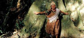 indigene-menschen-im-regenwald